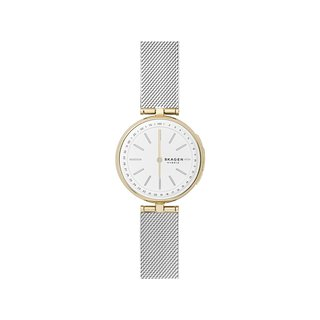 SKAGEN SKT1413 Watch