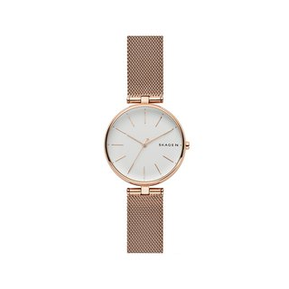 SKAGEN SKW2709 Watch