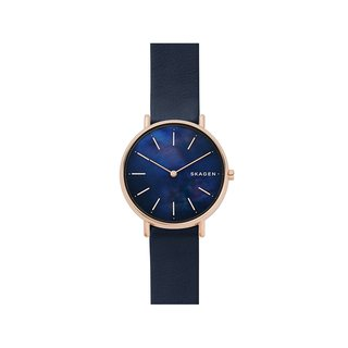 SKAGEN SKW2731 Watch