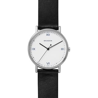 SKAGEN SKW6412 Watch