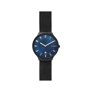 SKAGEN SKW6461 Watch