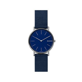 SKAGEN SKW6481 Watch