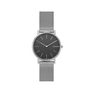 SKAGEN SKW6483 Watch