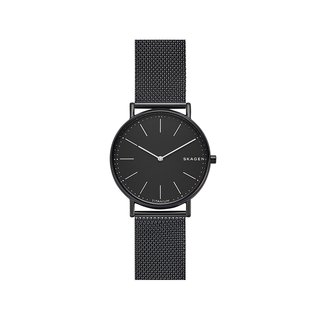 SKAGEN SKW6484 Watch